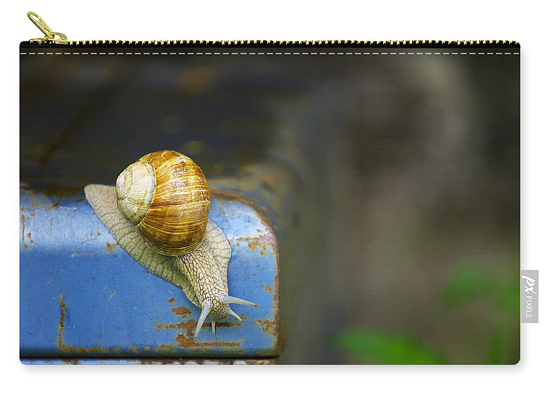 Snail Carry-all Pouch featuring the photograph Snail by Ivan Slosar