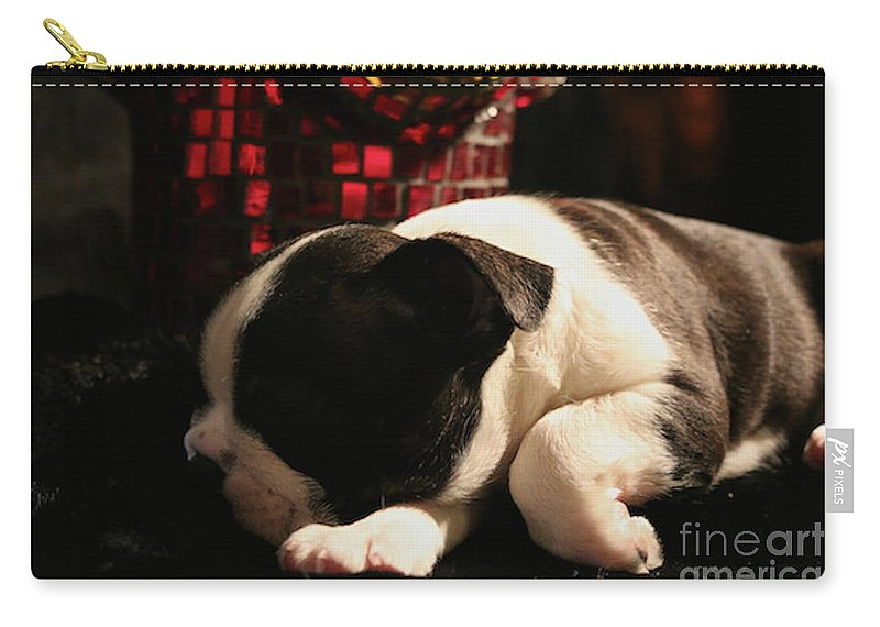 Animal Carry-all Pouch featuring the photograph Snoozer by Susan Herber