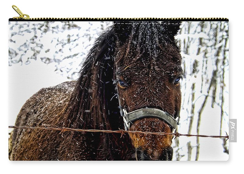 Horse Carry-all Pouch featuring the photograph Snow Beauty by Kristie Bonnewell