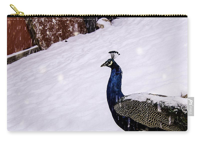 Animals Carry-all Pouch featuring the photograph Snow Bird by La Rae Roberts