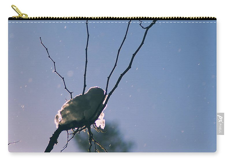 Snow Carry-all Pouch featuring the photograph Snow Bird by Yulia Kazansky