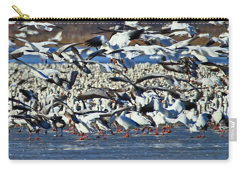 Snow Geese Carry-all Pouch featuring the photograph Snow Geese by Deb Buchanan