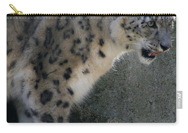 Snow Leopard Carry-all Pouch featuring the photograph Snow Leopard by Neal Eslinger