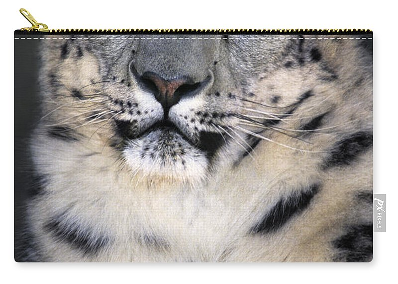 Snow Leopard Carry-all Pouch featuring the photograph Snow Leopard Portrait Endangered Species Wildlife Rescue by Dave Welling
