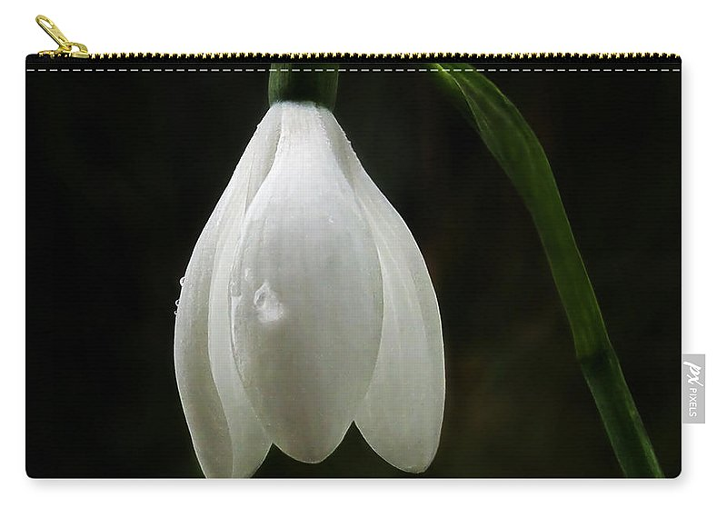 Snowdrop Carry-all Pouch featuring the photograph Snowdrop by Susie Peek