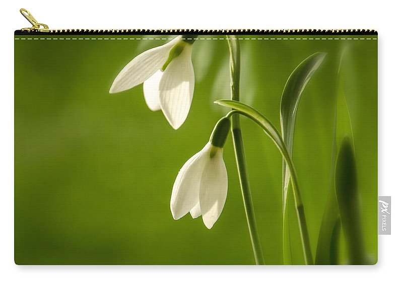 Background Carry-all Pouch featuring the photograph Snowdrop by TouTouke A Y