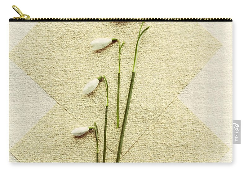 Spring Carry-all Pouch featuring the photograph Snowdrops by David Ridley