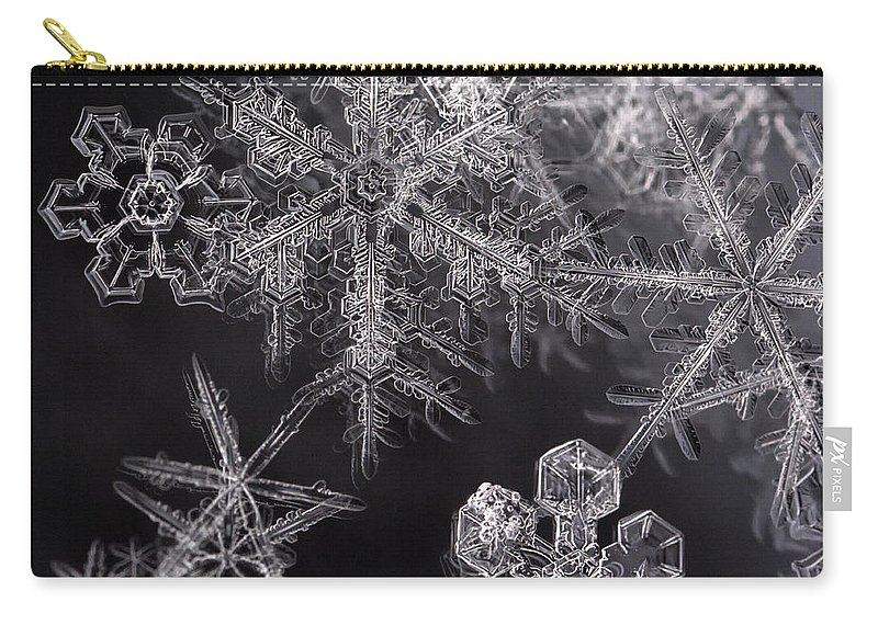 Snowflakes Carry-all Pouch featuring the photograph Snowflakes by Eunice Gibb