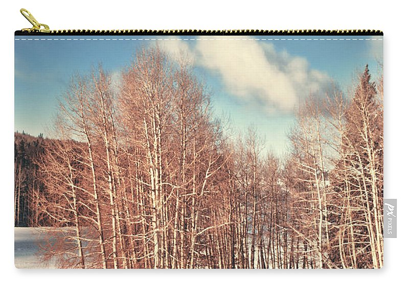 Snow Carry-all Pouch featuring the photograph Snowy Aspens by Donna Greene