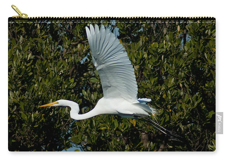 Snowy Egret Carry-all Pouch featuring the photograph Snowy Egret by Stephen Whalen
