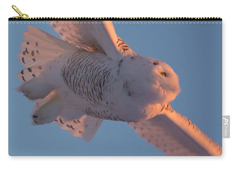 Field Carry-all Pouch featuring the photograph Snowy Owl Flight by Cheryl Baxter
