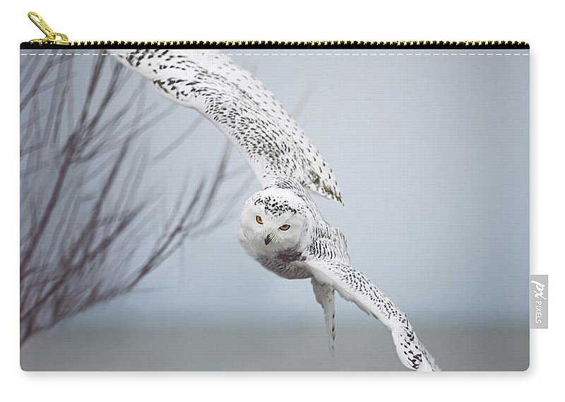 Wildlife Carry-all Pouch featuring the photograph Snowy Owl In Flight by Carrie Ann Grippo-Pike