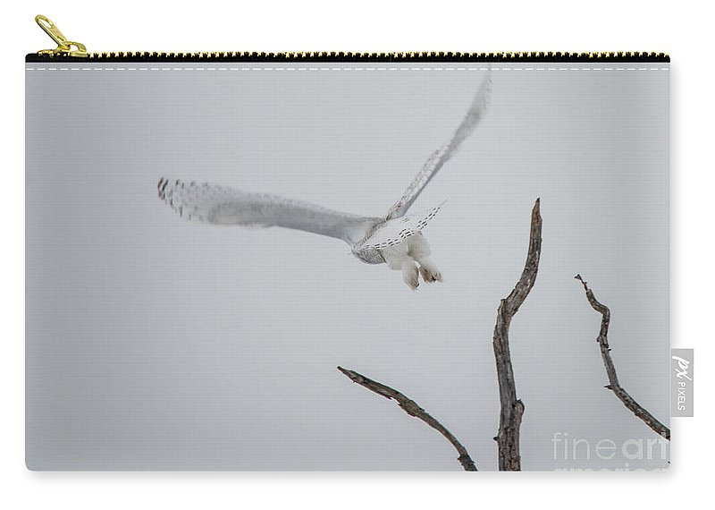 Field Carry-all Pouch featuring the photograph Snowy Taking Off by Cheryl Baxter