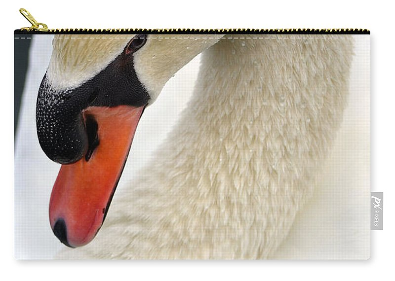 Mute Swan Carry-all Pouch featuring the photograph So Coy by Deb Halloran