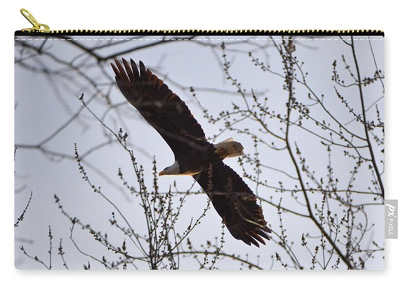 Eagle Carry-all Pouch featuring the photograph Soaring Above by Bonfire Photography