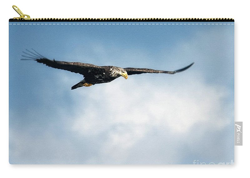 Bald Eagle Carry-all Pouch featuring the photograph Soaring by Claudia Kuhn