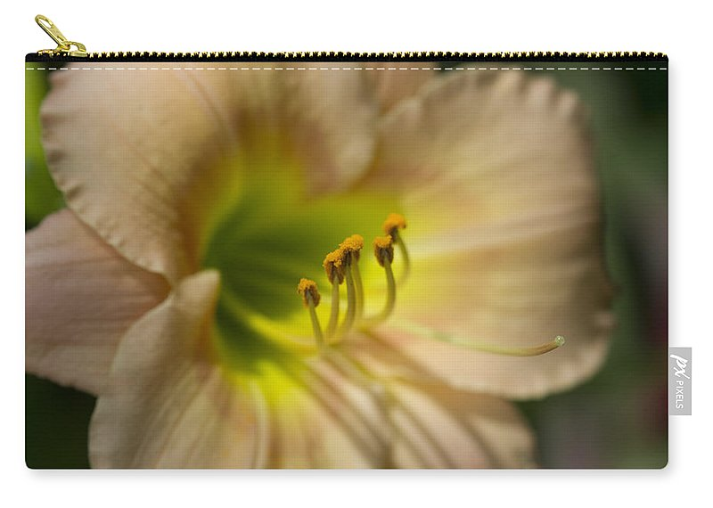 Hemerocallis Carry-all Pouch featuring the photograph Soft As A Peach Daylily by Kathy Clark