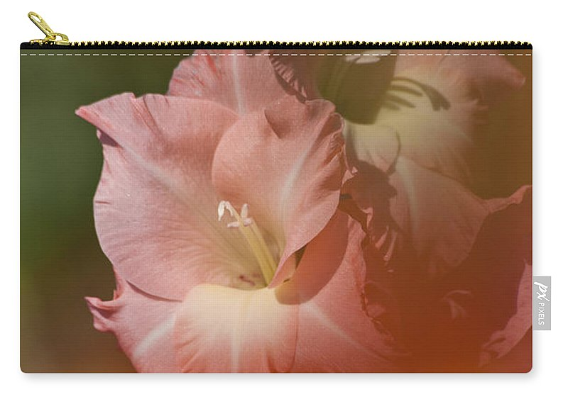 Gladiolus Carry-all Pouch featuring the photograph Soft Gladiolus by Heiko Koehrer-Wagner