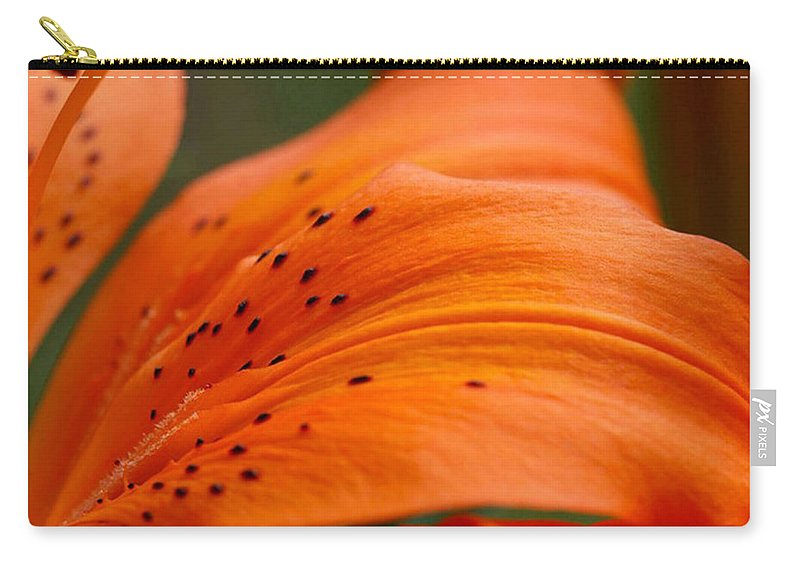 Flower Carry-all Pouch featuring the photograph Soft Lily by Carol Lynch