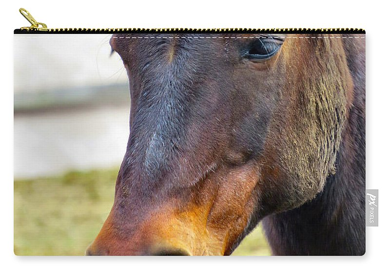 Horse Carry-all Pouch featuring the photograph Soft Nose by Art Dingo