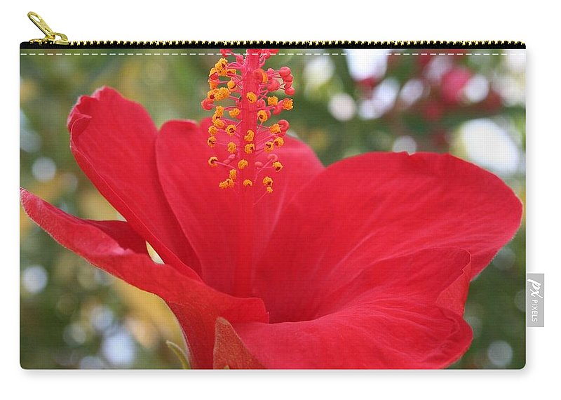 Hibiscus Carry-all Pouch featuring the photograph Soft Red Hibiscus With A Natural Garden Background by Tracey Harrington-Simpson