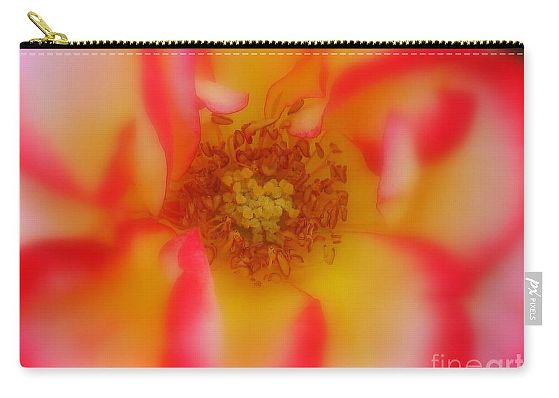 Soft Rose Carry-all Pouch featuring the photograph Soft Rose by Patti Whitten