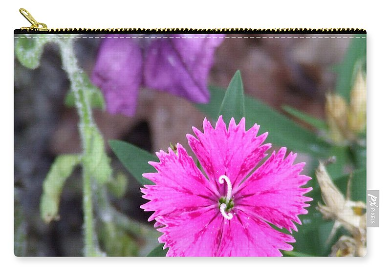 Flower Carry-all Pouch featuring the photograph Solitary by Andrea Anderegg