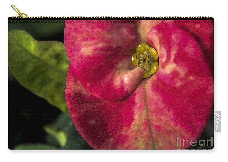 Lovejoy Carry-all Pouch featuring the photograph Solitary Beauty by Lovejoy Creations