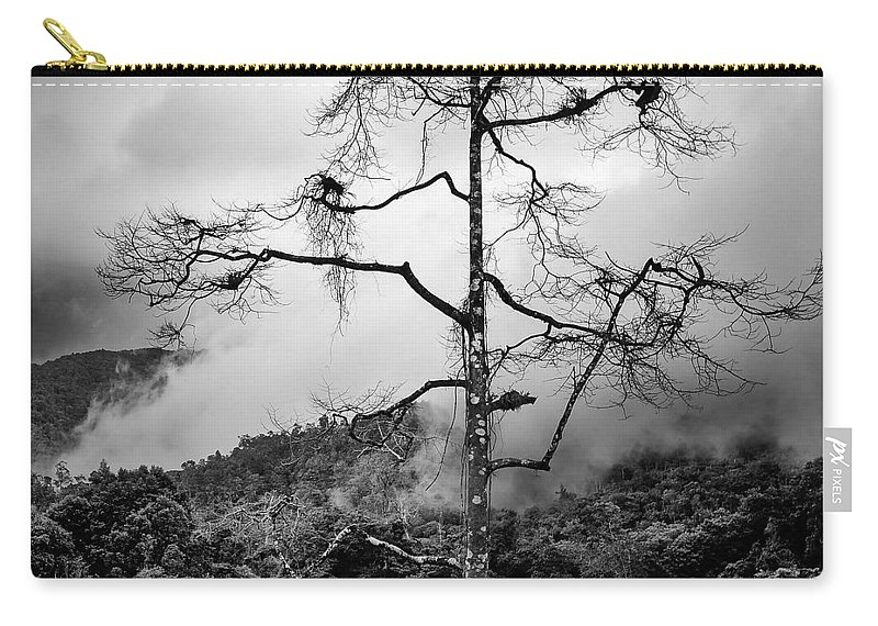 Cameron Highlands Carry-all Pouch featuring the photograph Solitary Tree by Dave Bowman