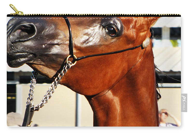 Horse Carry-all Pouch featuring the photograph Somebody Bet On The Bay by C H Apperson