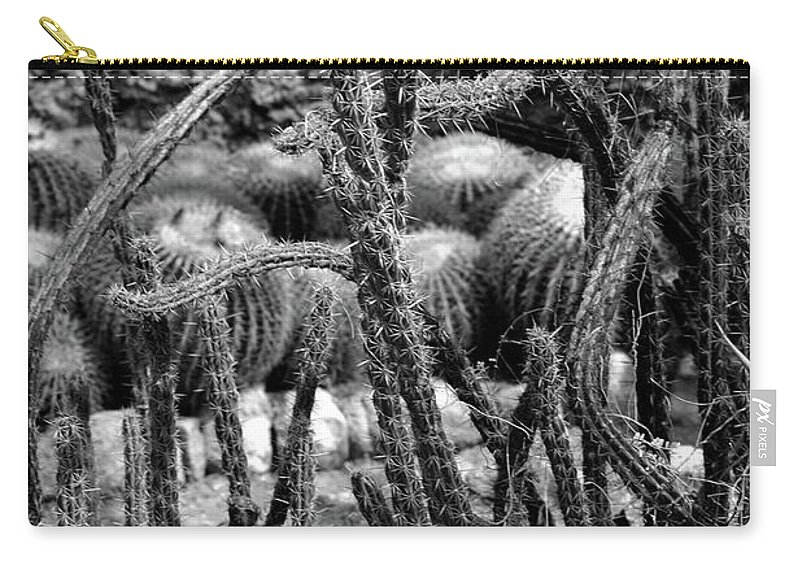 #cactus #boyce # Carry-all Pouch featuring the photograph Something Wild by Kathleen Struckle