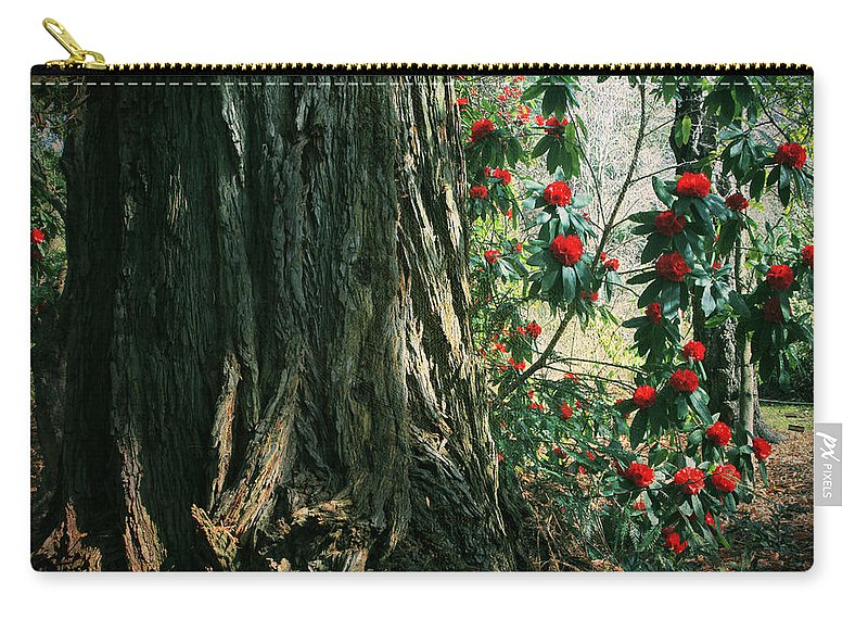 Uc Berkeley Botanical Garden Carry-all Pouch featuring the photograph Sometimes Life Is Sweet by Laurie Search