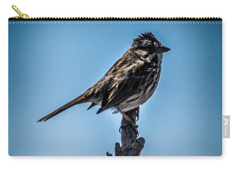 Bird Carry-all Pouch featuring the photograph Song Sparrow On Top Of Branch by Ronald Grogan