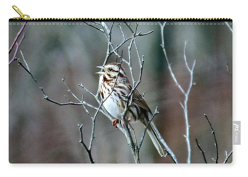 Song Carry-all Pouch featuring the photograph Songs Of Sparrows by Art Dingo