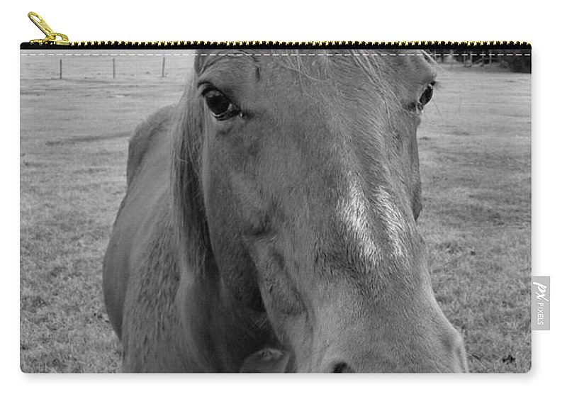 Black And White Carry-all Pouch featuring the photograph Sonny by Valerie Reeves
