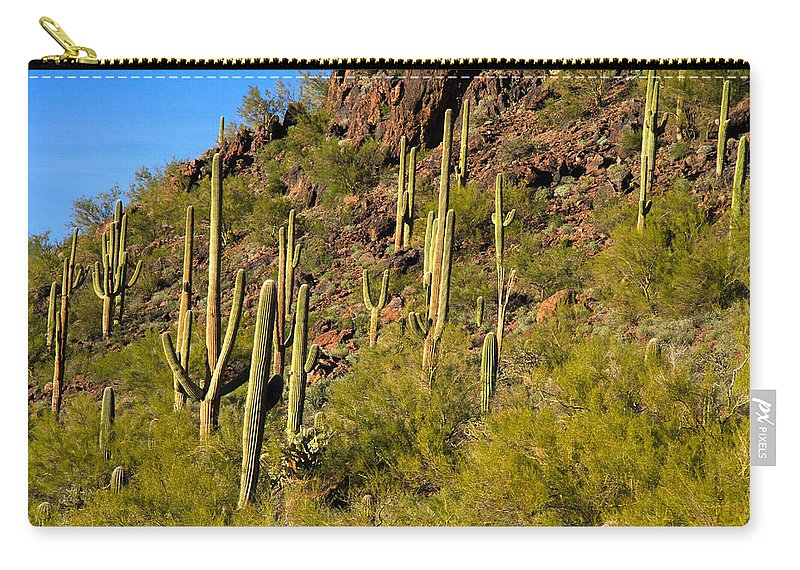 Arizona Carry-all Pouch featuring the photograph Sonoran Desert West Saguaro National Park by Ed Riche