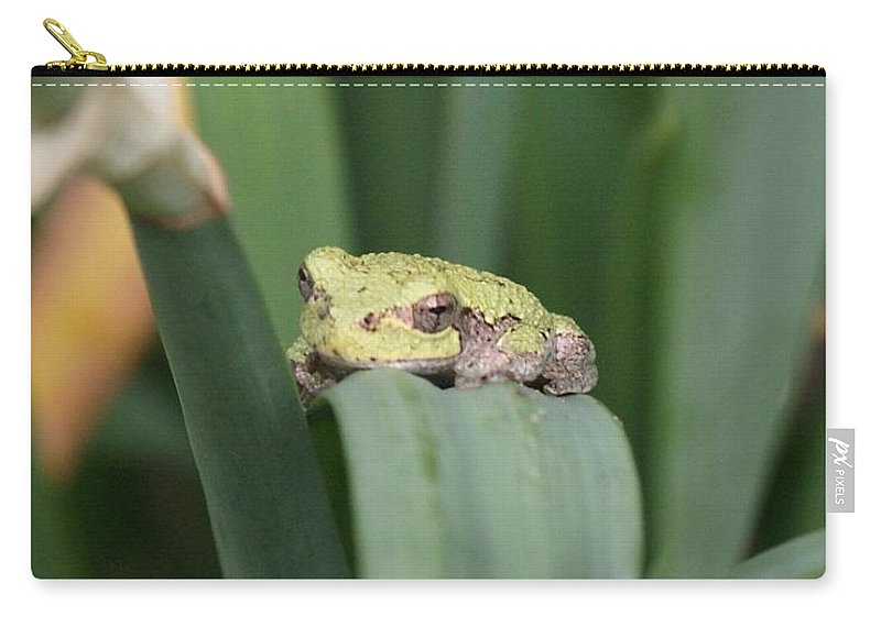 Tree Frogs Carry-all Pouch featuring the photograph Soooo....cute - Tree Frog by Holly Eads