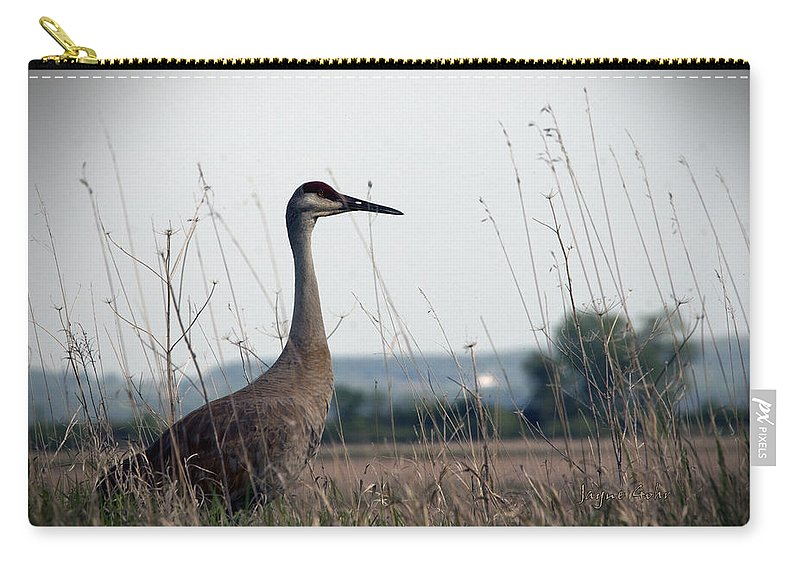 Sand Hill Crane Carry-all Pouch featuring the photograph Sound The Alert by Jayne Gohr