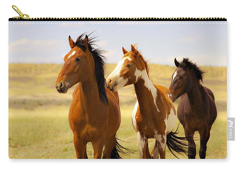 Wild Horses Navajo Indian Reservation Carry-all Pouch featuring the photograph Southwest Wild Horses On Navajo Indian Reservation by Jerry Cowart