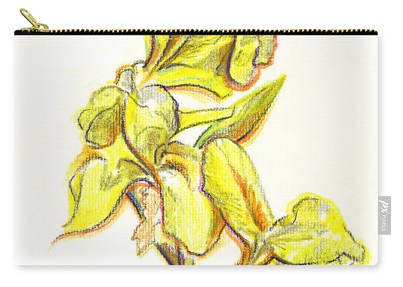 Spanish Irises Carry-all Pouch featuring the painting Spanish Irises by Kip DeVore