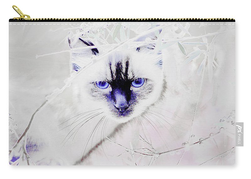 Animals Carry-all Pouch featuring the photograph Spellbound by Holly Kempe