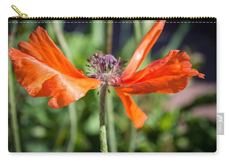 Flowers Carry-all Pouch featuring the photograph Spent Poppy by Debra Powell