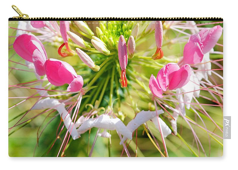 Spider Flower Carry-all Pouch featuring the photograph Spider Flower by Optical Playground By MP Ray