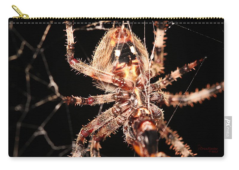 Spider Carry-all Pouch featuring the photograph Spider - Hairy by Ericamaxine Price