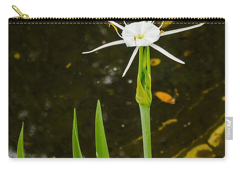 Austin Carry-all Pouch featuring the photograph Spider Lily Wildflower by Allen Sheffield