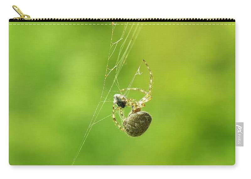 Spider Carry-all Pouch featuring the photograph Spider Wrapping Its Food by Sherman Perry