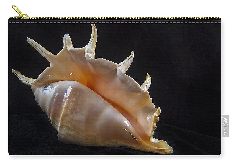 Shell Carry-all Pouch featuring the photograph Spike by Jean Noren