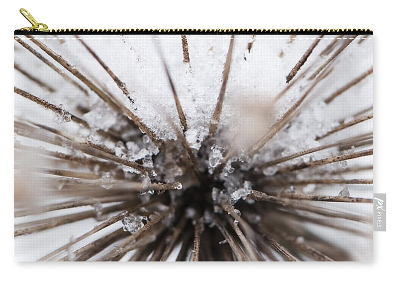 Spikes Carry-all Pouch featuring the photograph Spikes And Ice by Anne Gilbert