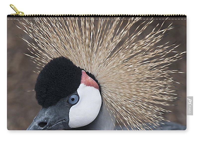 Bird Carry-all Pouch featuring the photograph Spikey Feathers-closeup by Cindy Angiel