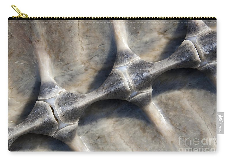 Turtle Carry-all Pouch featuring the photograph Spine by Tim Hester